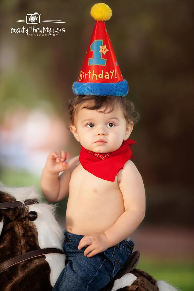 First Birthday/ Tampa Children's Photographer