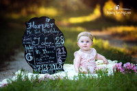 Harper's First Birthday Session/ Tampa Children's Photographer