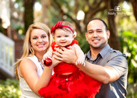 2014 Chirstmas Mini Sessions